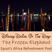 Disney Drink Of The Day: The Frozen Elephant - Epcot Series