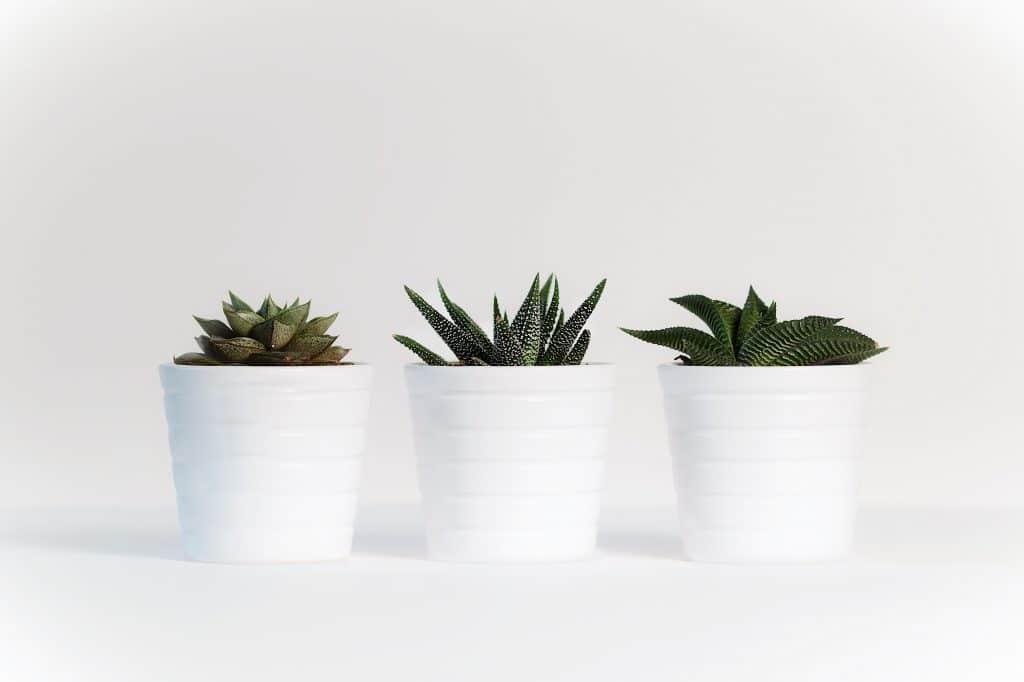 How to Create an Eco-Friendly Non-Toxic Nursery