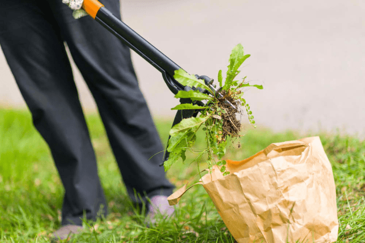 quick gardening hacks