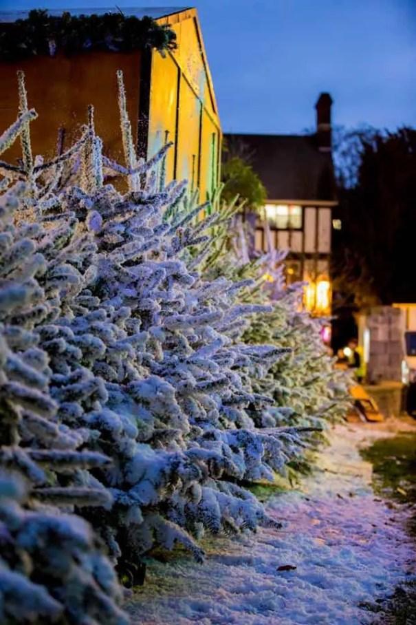 christmas in kingston