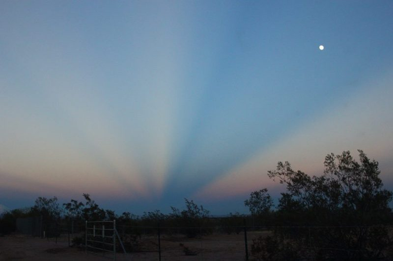 Blue and pink rays converging to a dark line of twilight above brushy landscape.