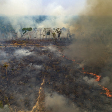 """Large areas of the Amazon rainforest have burnt in recent years, often due to farming and land-clearing. Scientists fear too much fire in the """"lungs of the planet"""" could trigger a tipping point of irreversible landscape change from jungle to savannah."""