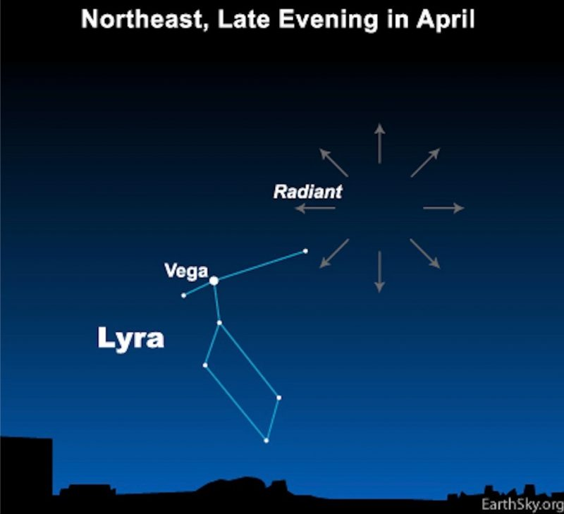 Chart showing Lyra, Vega, and radial arrows from Lyrid meteor shower radiant point.