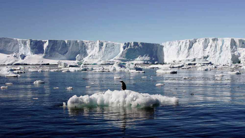 Third of Antarctic ice shelf at risk of collapsing due to global warming