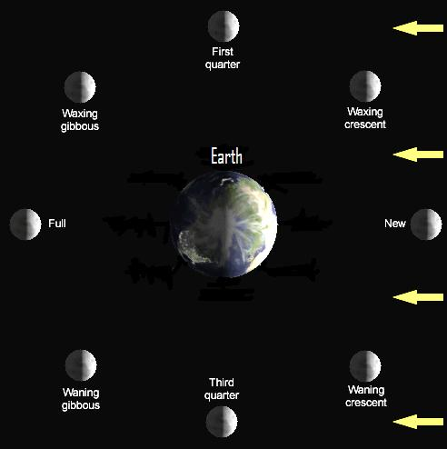 Earth, with moon in 8 positions around it showing how much is visible from Earth.
