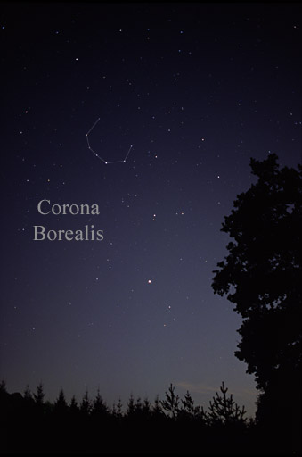 Starry sky photo with Northern Crown constellation marked. Arcturus visible above trees.