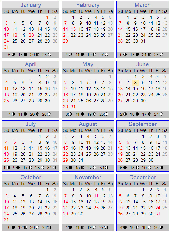 Calender for the year 2021 with Sundays in red.
