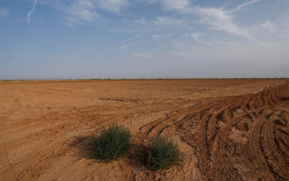 First water cuts in US West supply to hammer Arizona farmers