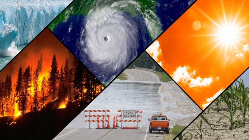 July 2021 Earth's hottest month: Six photos of natural disasters.
