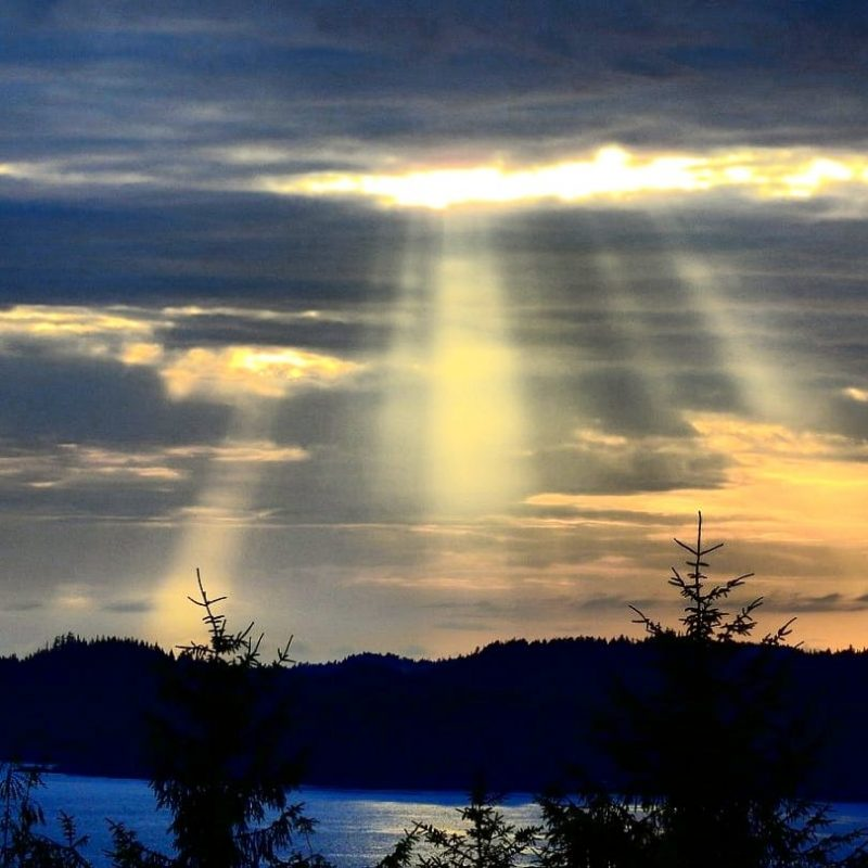 Sunbeams over a forest and lake.