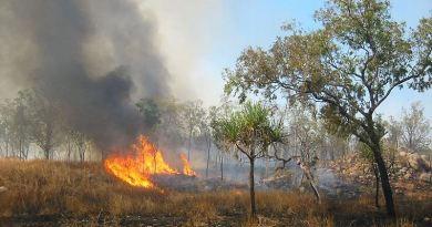 Die wahren Auslöser für die Buschfeuer in Australien