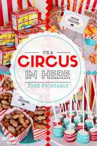 Circus Party: The Best Games, Food, and Decor for your Big Top Bash! PLUS free water bottle labels printables