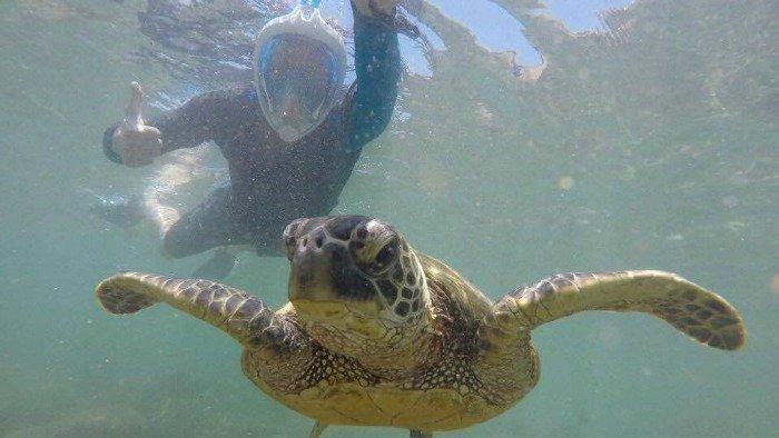 Hawaii Tips for the perfect Hawaii Vacation