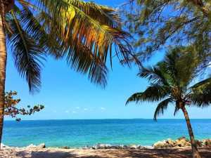 Key West Florida: 99 Things to do in Key West and the Florida Keys