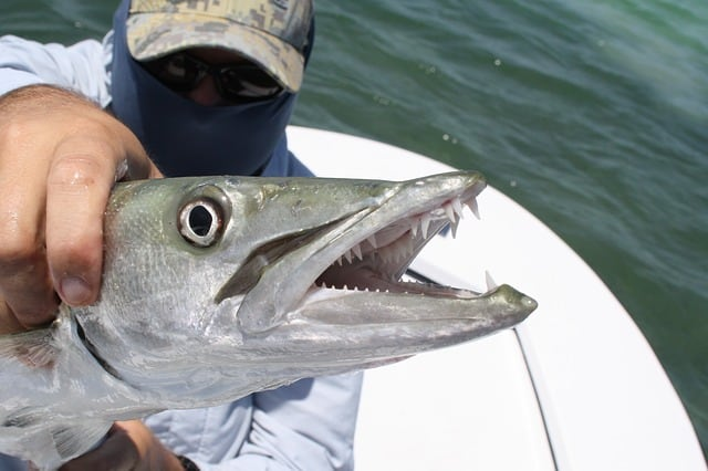 Best fishing in the Florida Keys and 99 other Things to do in the Florida Keys