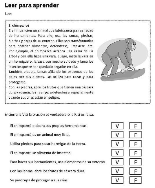 spanish level 4