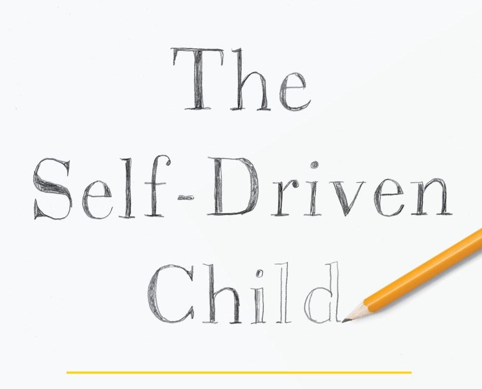 """pencil sketch """"The Self-Driven Child"""""""