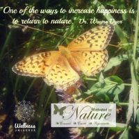 The Shift by Dr. Wayne Dyer