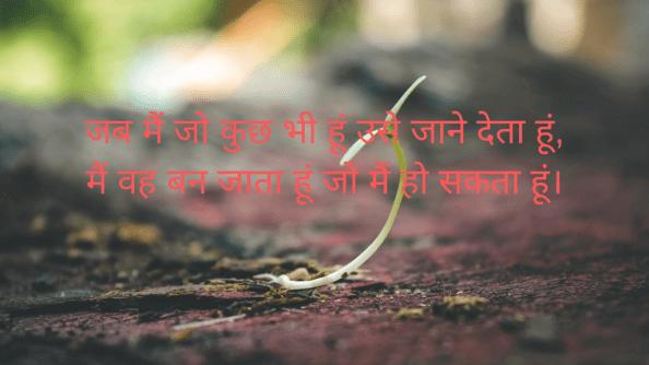 "ab main jo kuchh bhee hoon use jaane deta hoon, main vah ban jaata hoon jo main ho sakata hoon. ""- lao tzu,motivation quotes in hindi with images,motivational quotes with images,motivational quotes in hindi,life  motivational quotes in hindi"