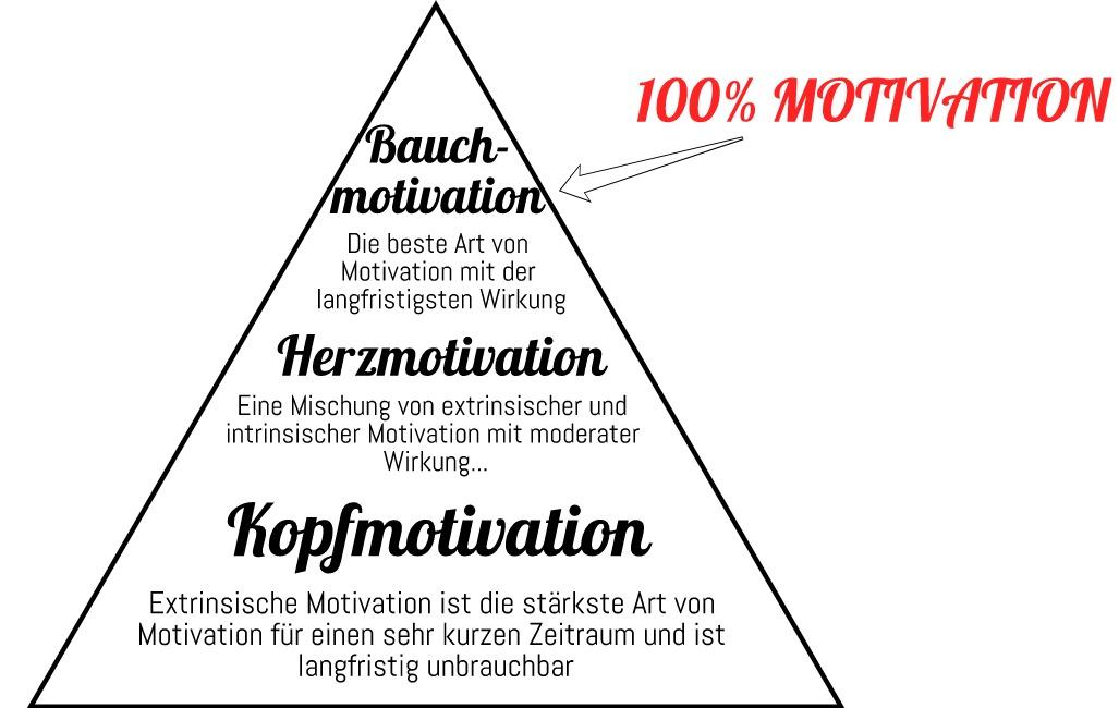 Was ist Motivation - Motivationsarten