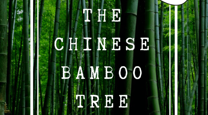 The Chinese Bamboo Tree – Les Brown Motivational Speech
