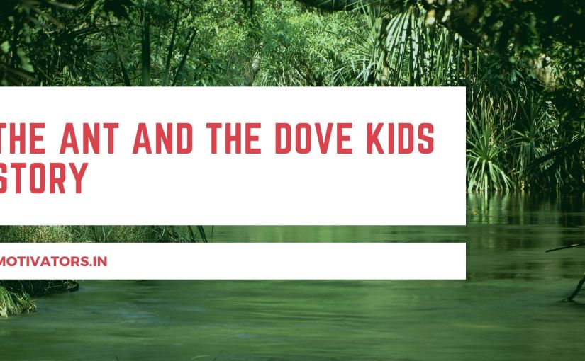 The Ant And The Dove Kids Story