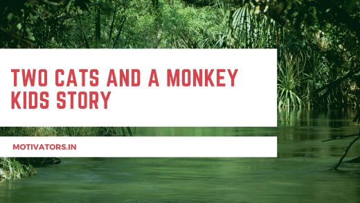 Two Cats And A Monkey Kids Story