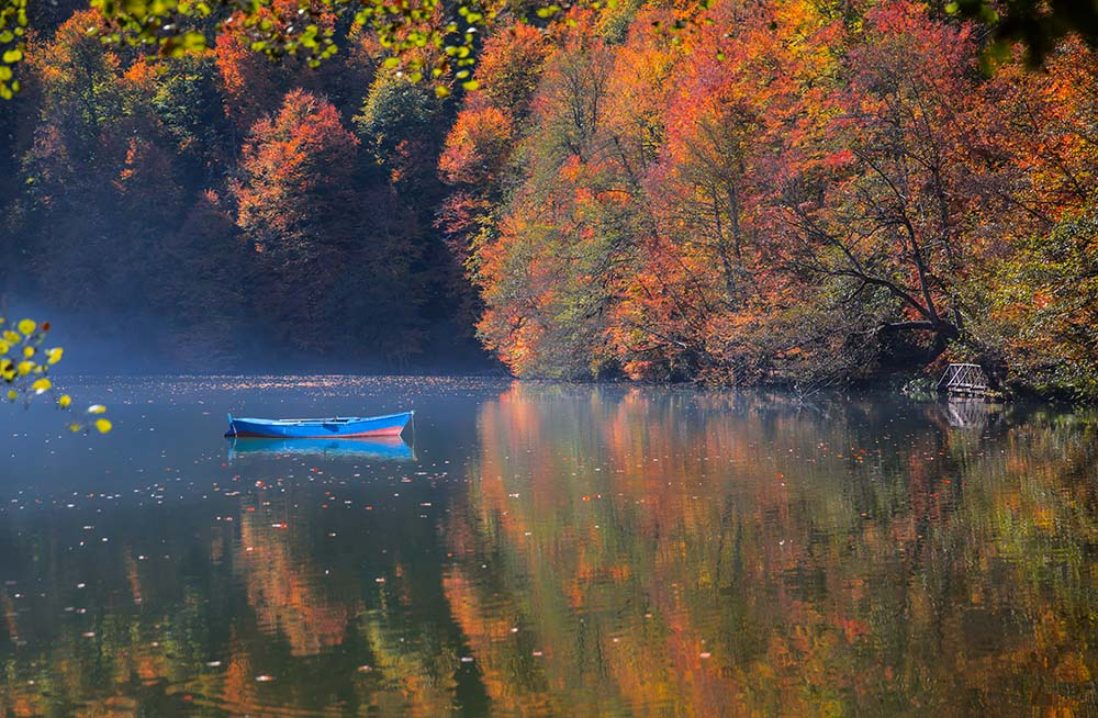 Autumn landscape in (seven lakes) Yedigoller Park Bolu, Turkey.