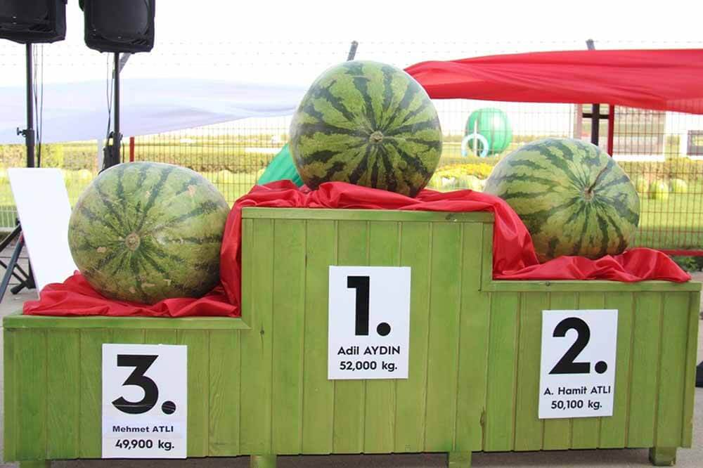 Diyarbakır Watermelon Festival