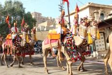 voyage-moto-inde-jaisalmer-desert-festival-true-riders-travel