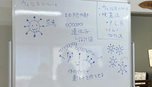 社内でウイルスについての講義を行いました(参考情報リンクあり)