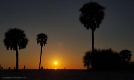MotoADVR_SunsetPalmsSiestaKey