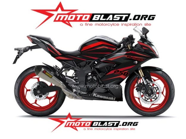 ninja 250 RR mono BLACK TRIBAL2
