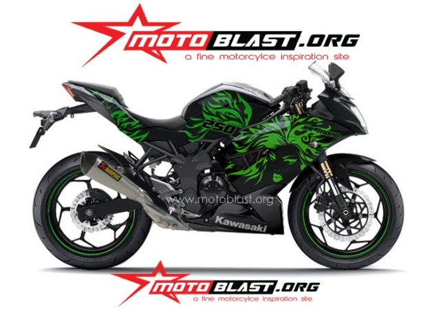 ninja 250 RR mono BLACK TRIBAL3