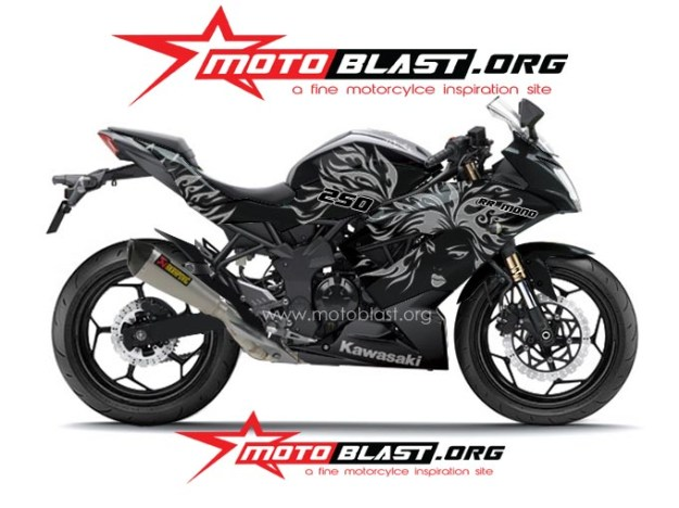 ninja 250 RR mono BLACK TRIBAL4