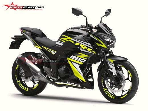 Z250R-BLACK RC1
