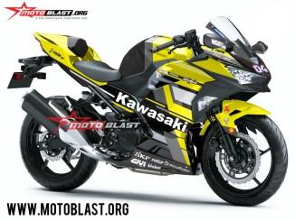 Kawasaki Ninja 250R 2018-DESMOSEDICI GP18-black2