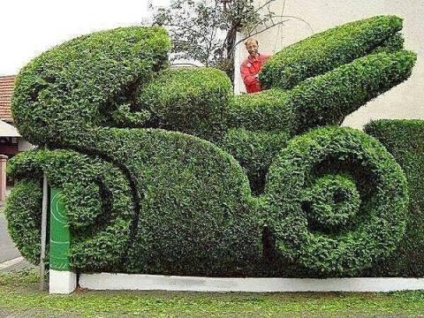 motor pohon