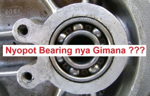 nyop[ot inner bearing