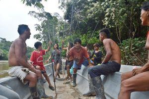 Охота на кабанов с ваорани