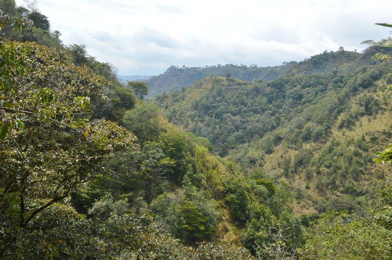Окрестности села Апуэла