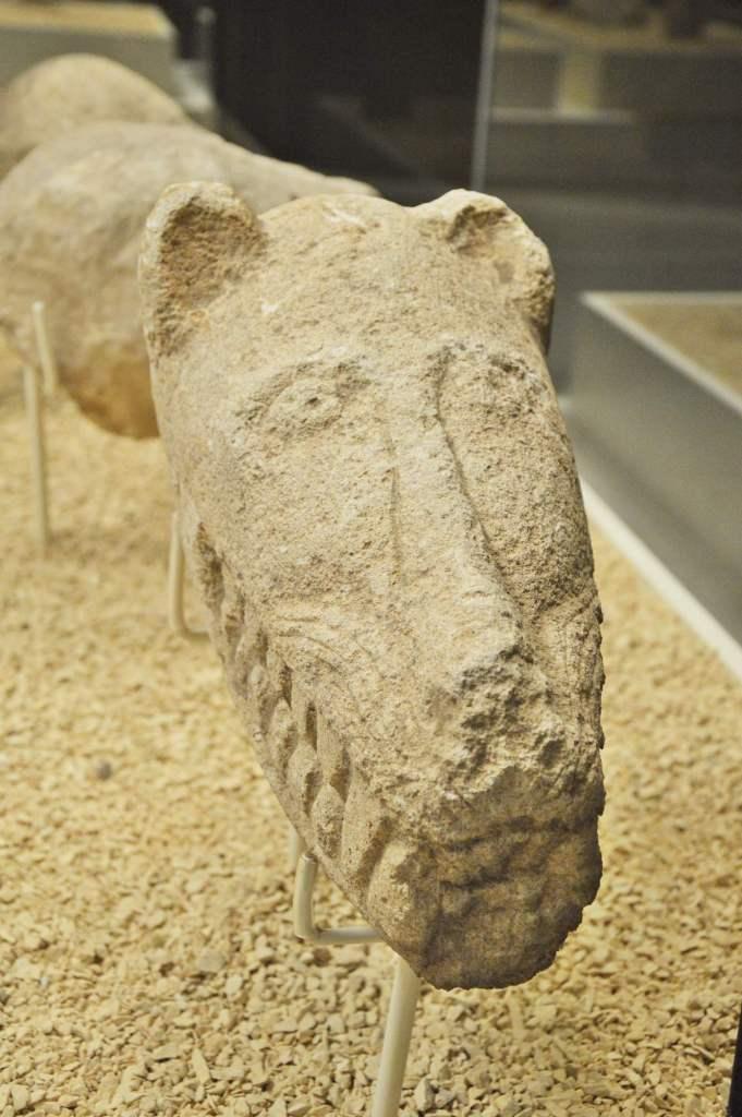 Голова ягуара