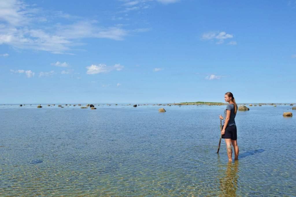 Белое море летом