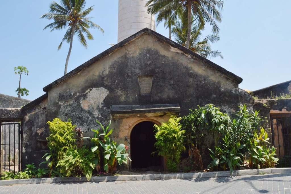 Одноэтажный дом в окружении пальм