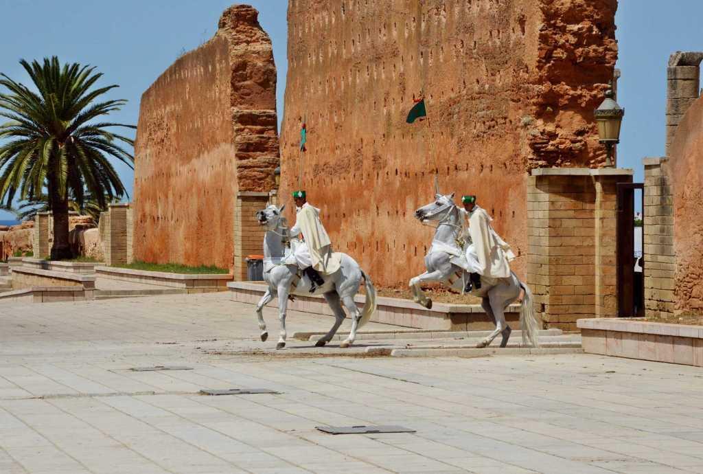 Всадники на белых лошадях с флагом