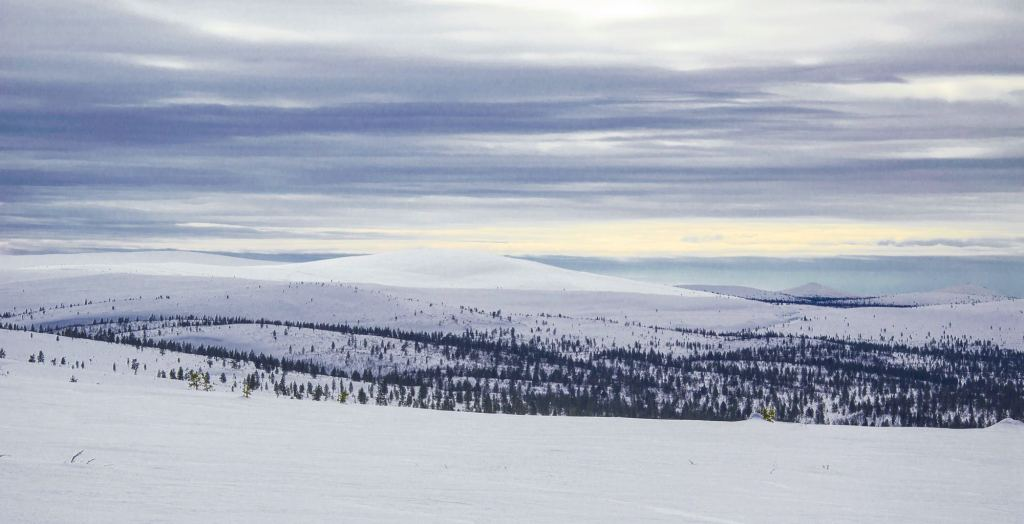 Панорама - регион Лапландия