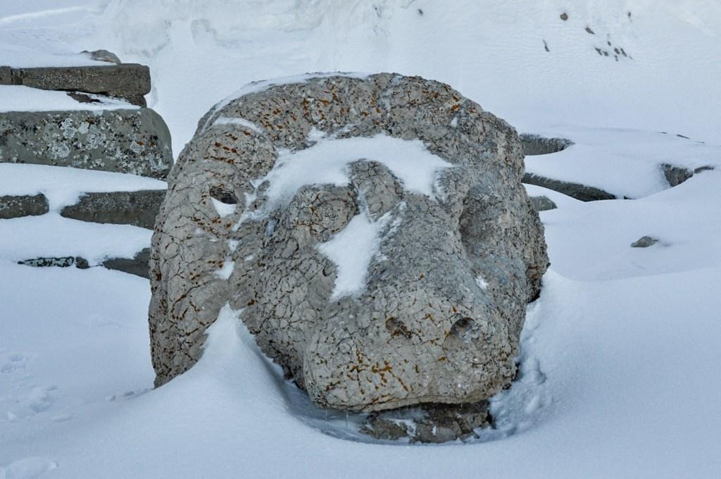 Каменная голова льва в снегу