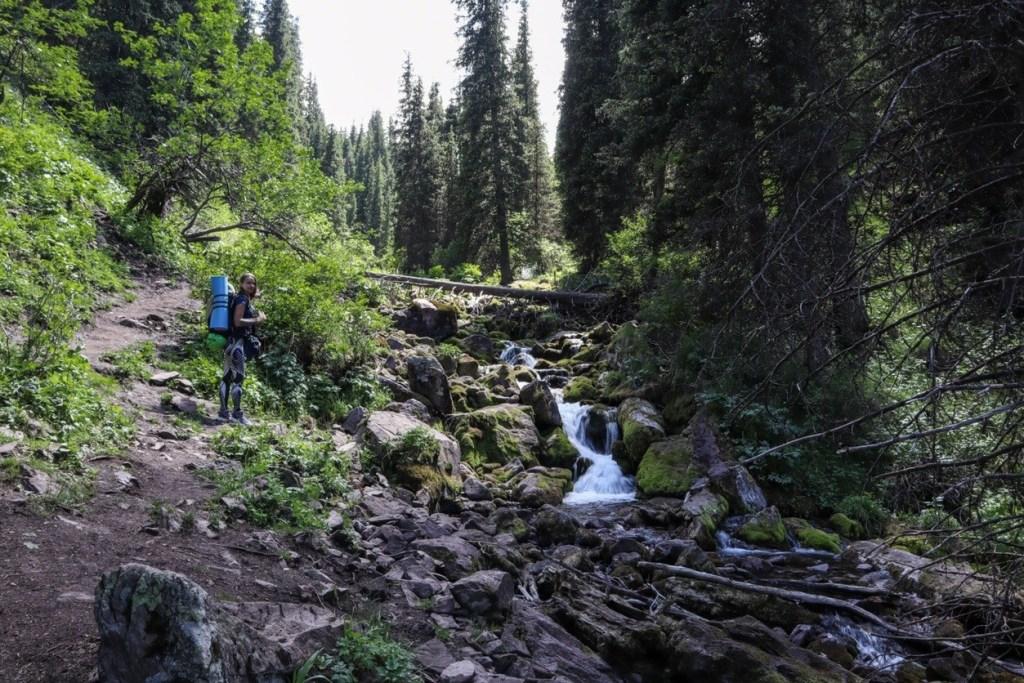 река в лесу с маленьким водопадом