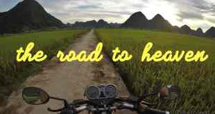 50 Custom Sticker Slogans for Bike and Road Trip