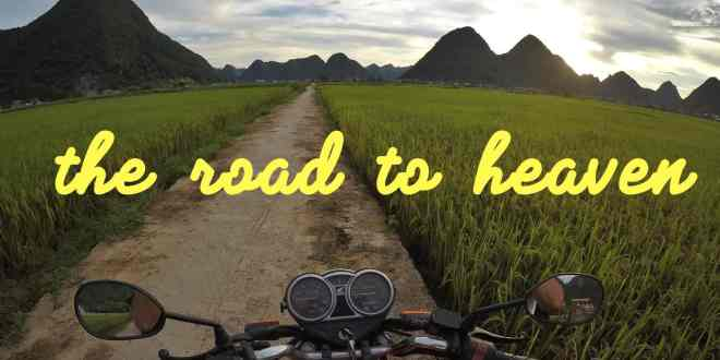 50 Custom Sticker Slogans for Bike and Road Trip
